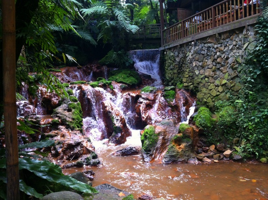 Stream running through Kampung Daun