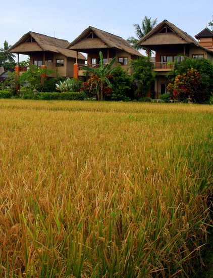 Tegal Sari Ubud Bungalows
