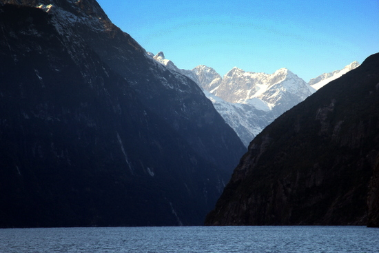 Milford Sound is definitely worth the cost
