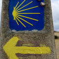 The way to Santiago is marked by a scallop shell
