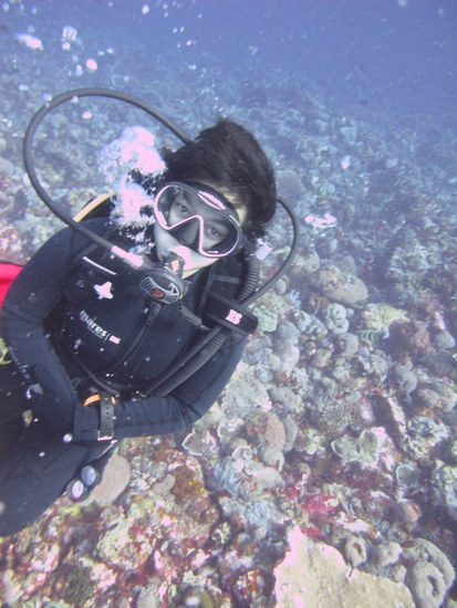 diving di komodo