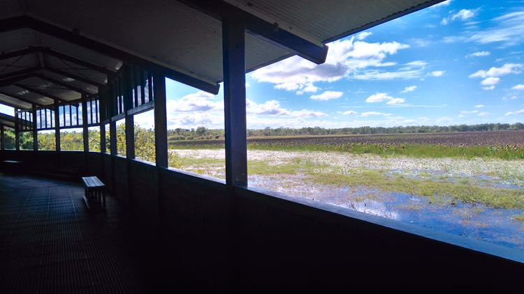 Bird hide di Mamukala Wetlands