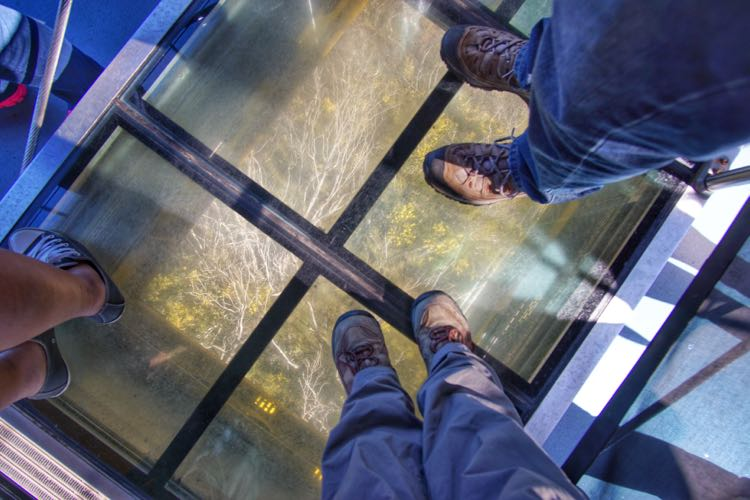 Glass floor di Scenic Skyway