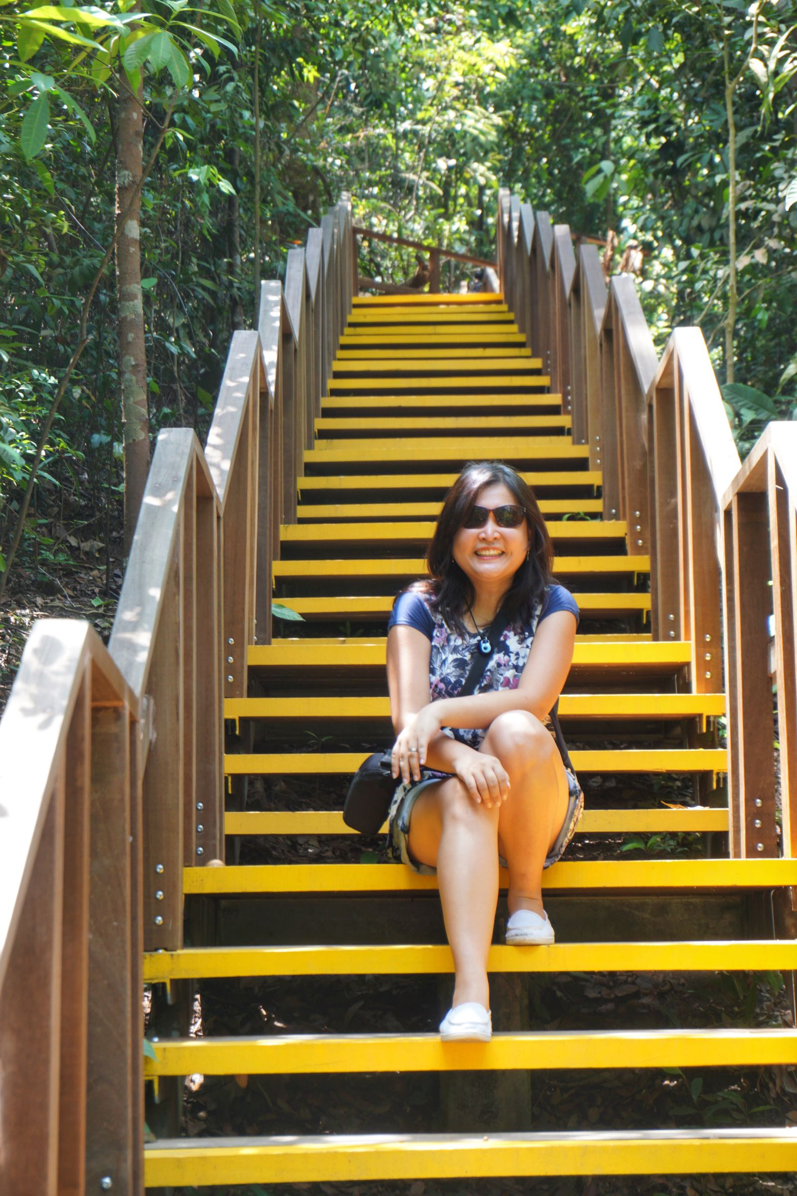 Banyak Boardwalk Di Jalur Tree Top Walk Singapore