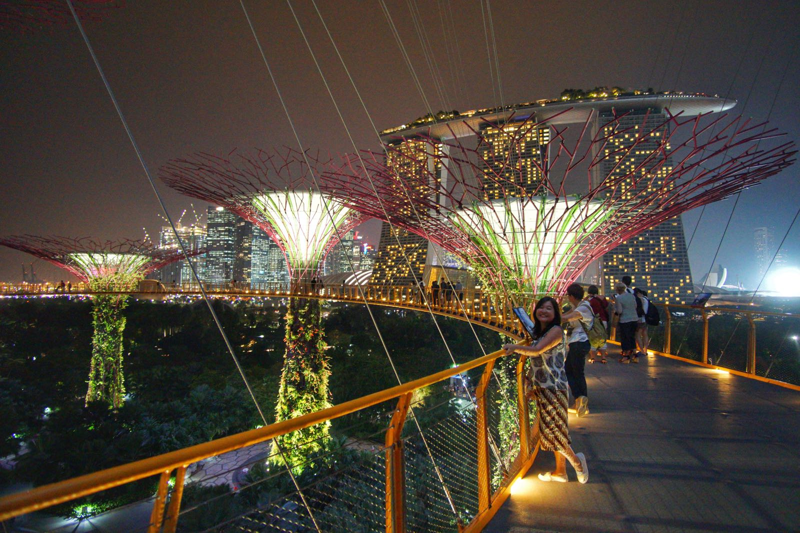 Di Atas OCBC Skyway Gardens By The Bay