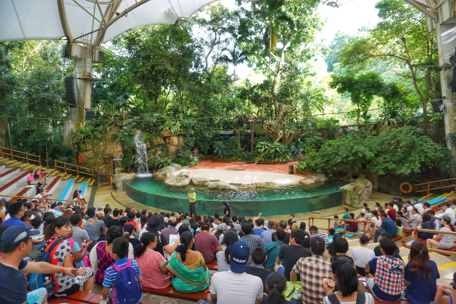 Pertunjukan Di Singapore Zoo