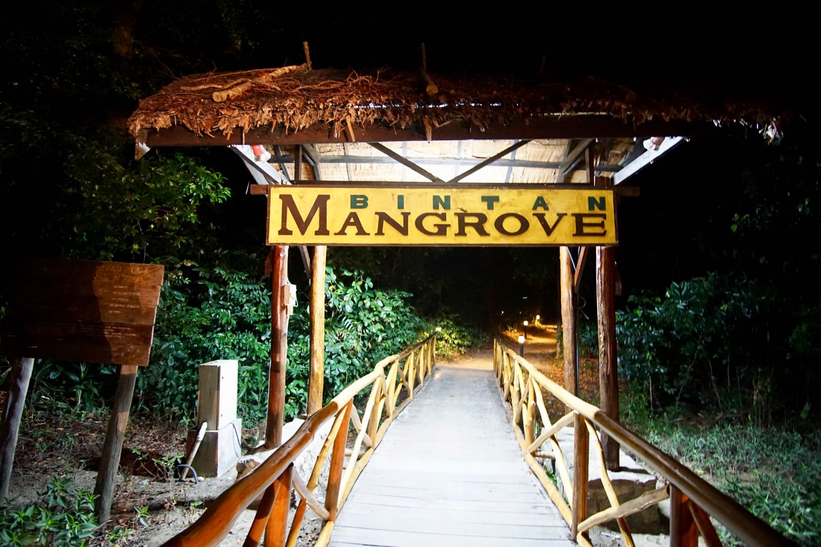 Mangrove Fireflies Tour
