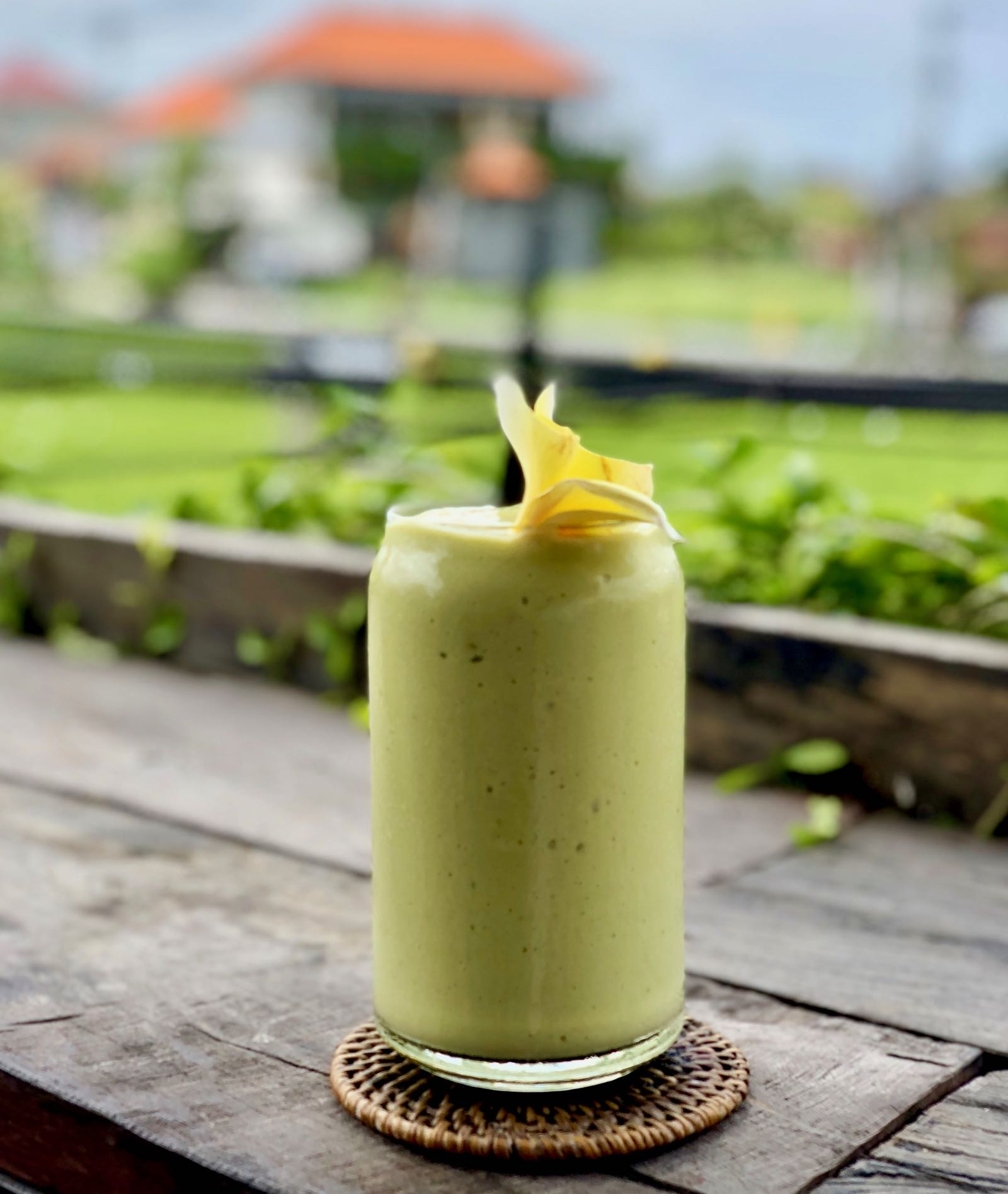 Avocado Factory Canggu Shake